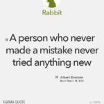 Albert Einstein (Rabbit)