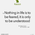 Marie Curie (Rabbit)