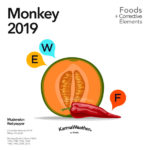 Monkey 2019 food horoscope