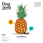 Dog 2019 food horoscope