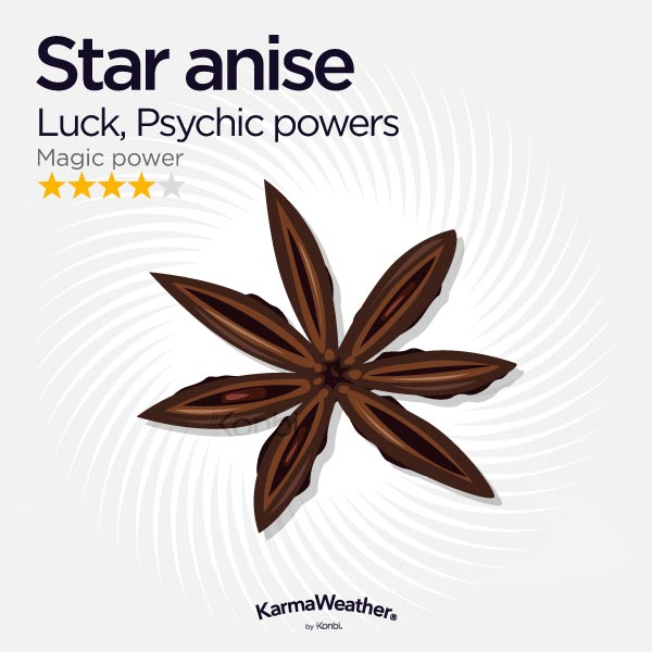 Star anise illustration