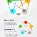 Interaction des 5 éléments chinois