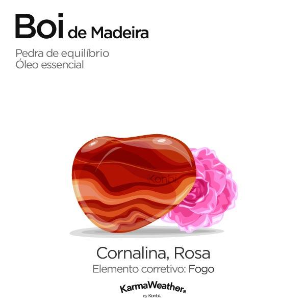 Boi de Madeira: pedra de equilíbrio e óleo essencial
