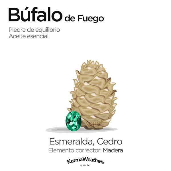 Búfalo de Fuego: piedra de equilibrio y aceite esencial