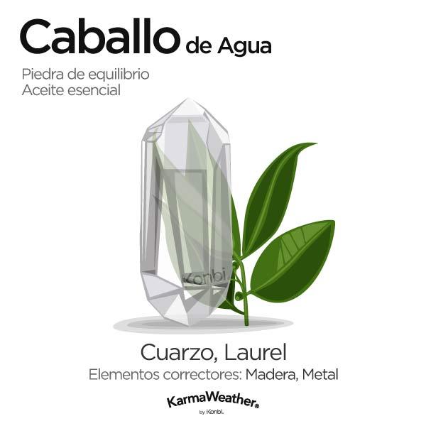 Caballo de Agua: piedra de equilibrio y aceite esencial