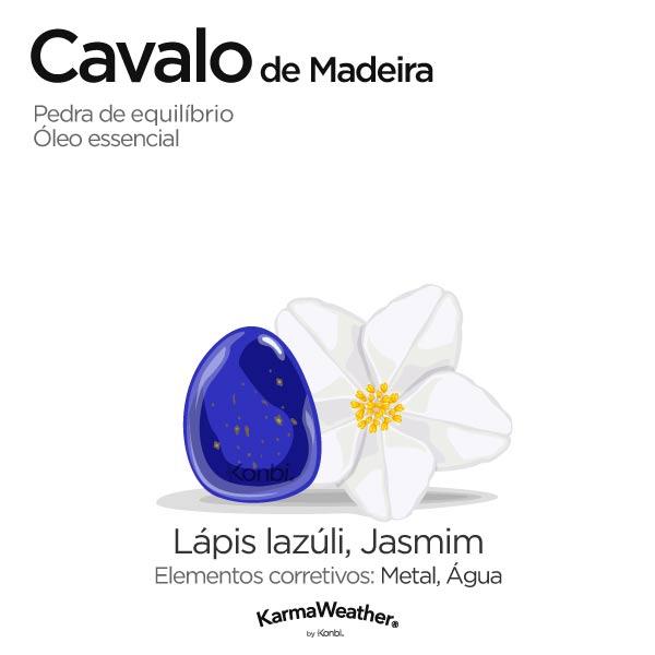 Cavalo de Madeira: pedra de equilíbrio e óleo essencial