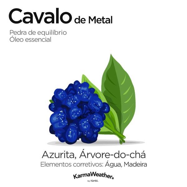 Cavalo de Metal: pedra de equilíbrio e óleo essencial