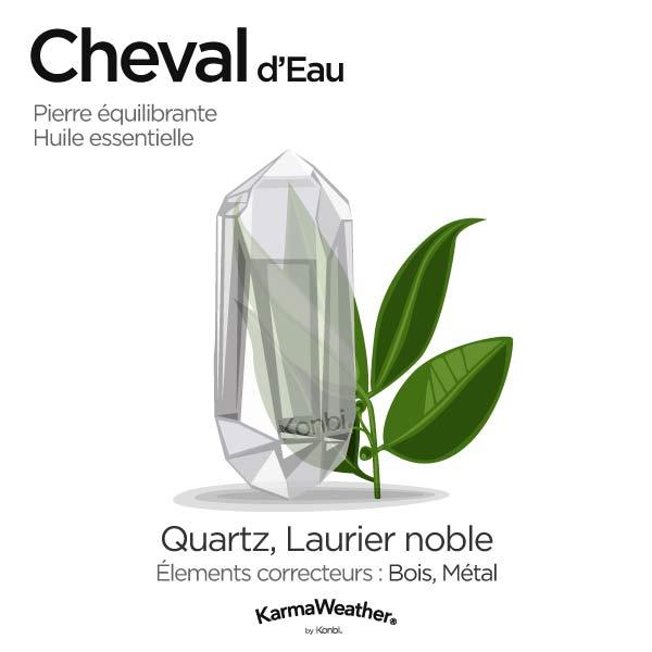 Cheval d'Eau: pierre équilibrante et huile essentielle