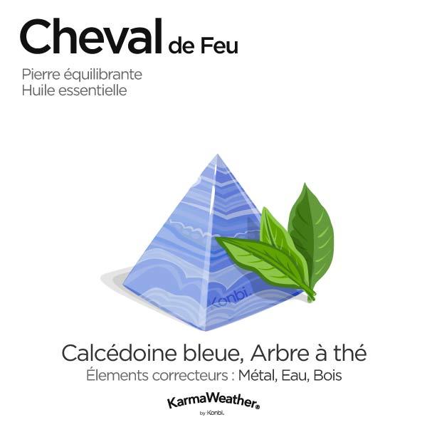 Cheval de Feu: pierre équilibrante et huile essentielle
