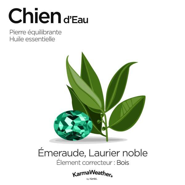 Chien d'Eau: pierre équilibrante et huile essentielle