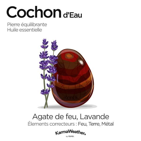 Cochon d'Eau: pierre équilibrante et huile essentielle