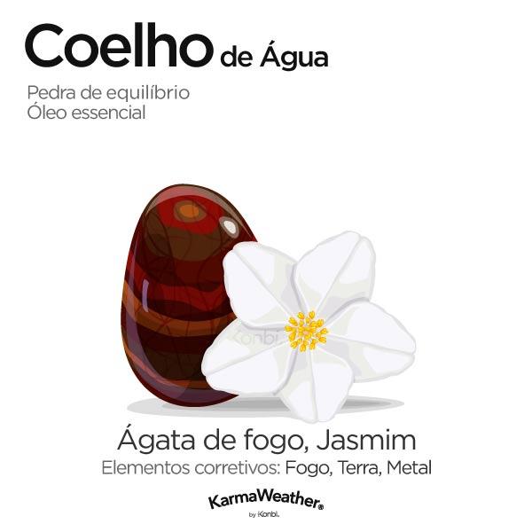 Coelho de Água: pedra de equilíbrio e óleo essencial