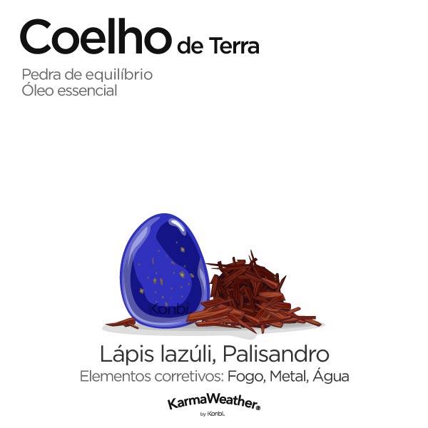 Coelho de Terra: pedra de equilíbrio e óleo essencial