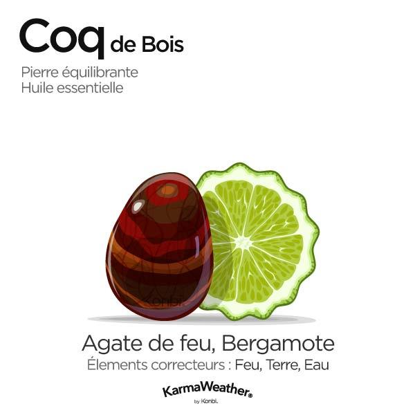 Coq de Bois: pierre équilibrante et huile essentielle