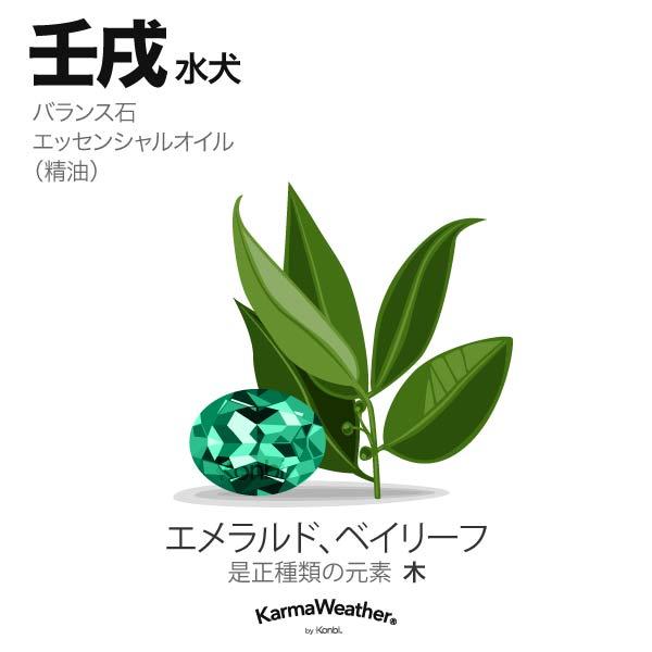 水犬(壬戌):バランス石、エッセンシャルオイル