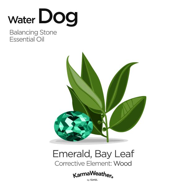 Water Dog's balancing stone and essential oil