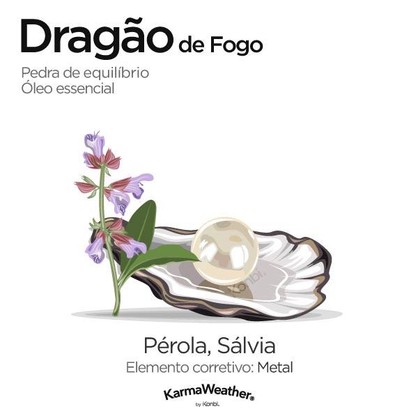 Dragão de Fogo: pedra de equilíbrio e óleo essencial
