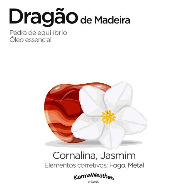 Dragão de Madeira: pedra de equilíbrio e óleo essencial