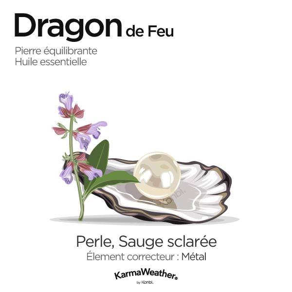 Dragon de Feu: pierre équilibrante et huile essentielle