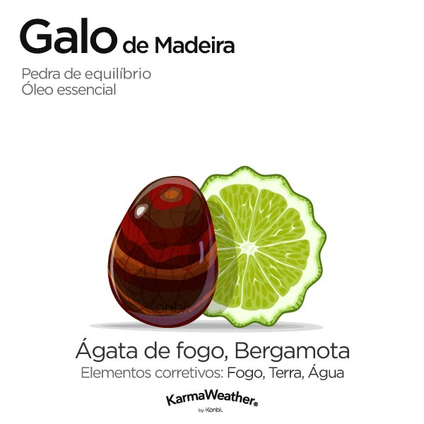 Galo de Madeira: pedra de equilíbrio e óleo essencial