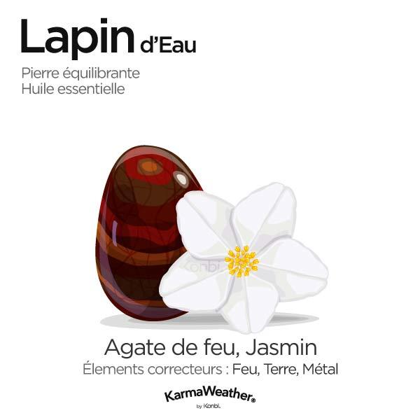 Lapin d'Eau: pierre équilibrante et huile essentielle