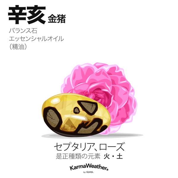金猪(辛亥):バランス石、エッセンシャルオイル