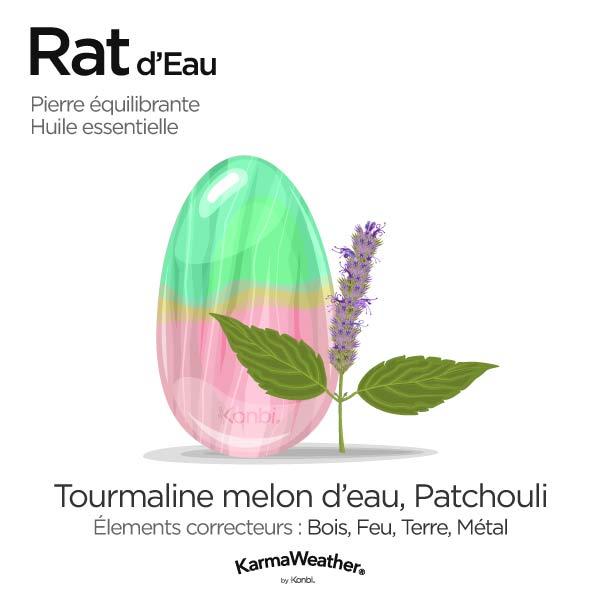 Rat d'Eau: pierre équilibrante et huile essentielle