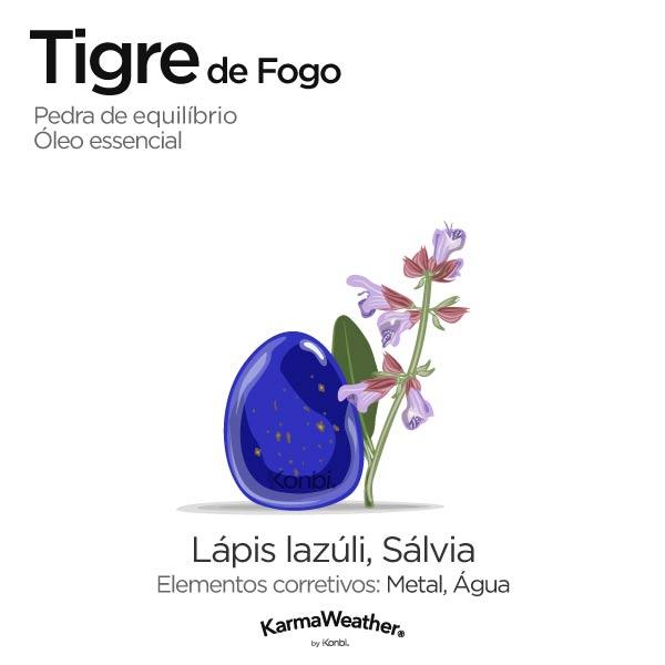 Tigre de Fogo: pedra de equilíbrio e óleo essencial