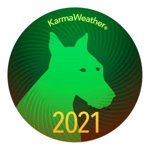 Perro 2021