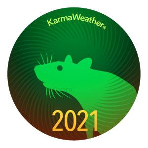 Rata, Ratón 2021
