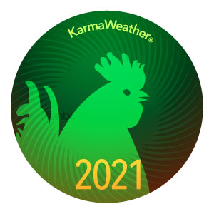 Rooster, Chicken 2021